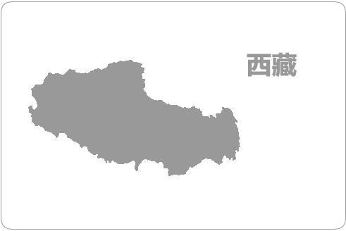西藏电信资源池介绍